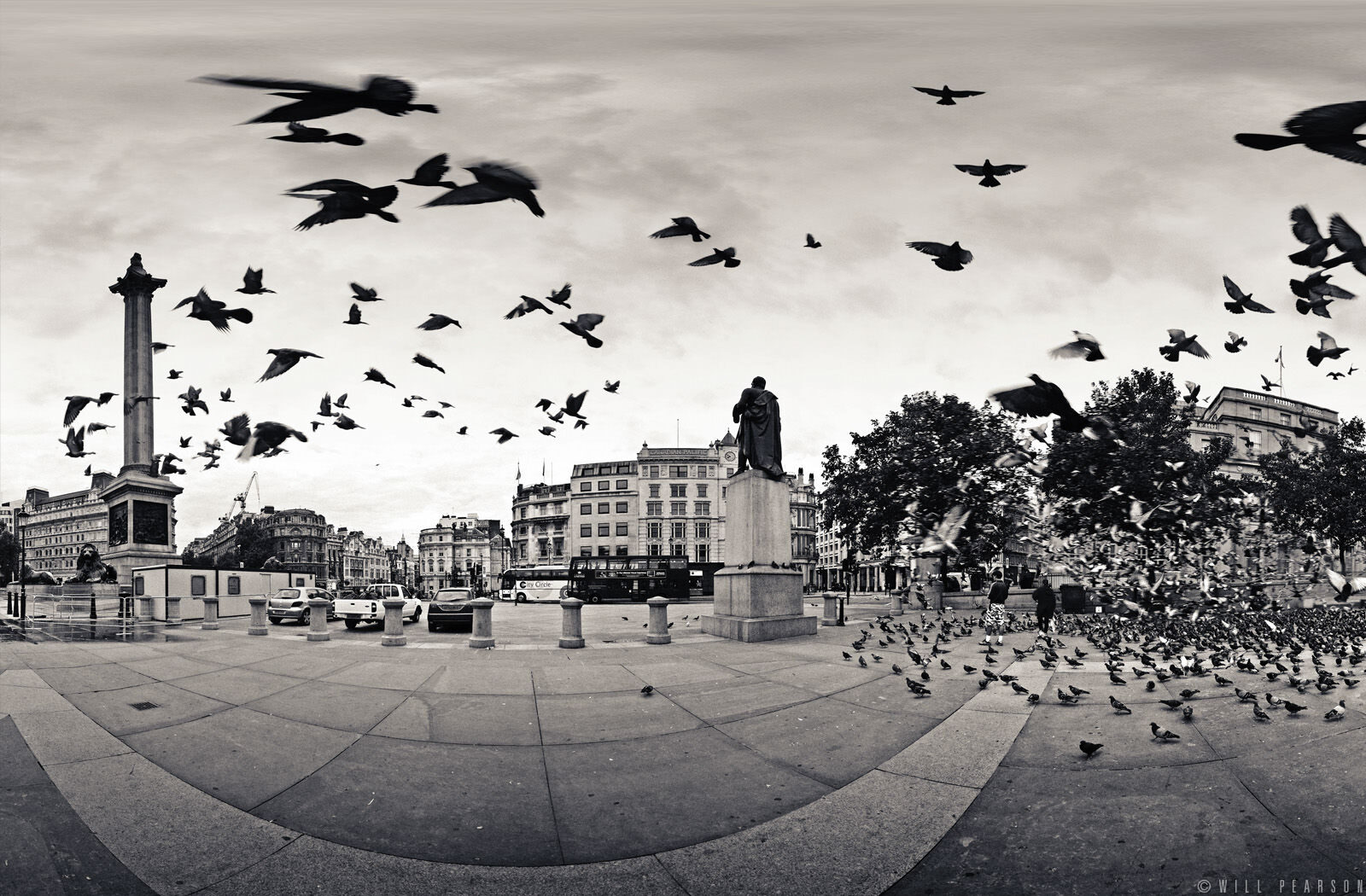 The Birds, Trafalgar Square