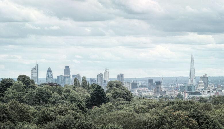 Hampstead Heath View 2012
