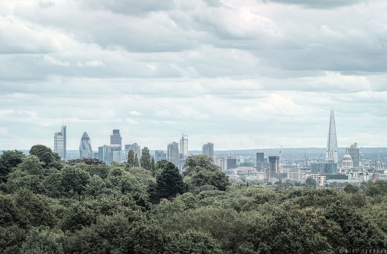 Hampstead Heath View 2012